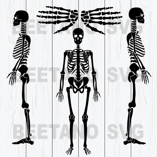 Skeleton Cutting Files For Cricut, SVG, DXF, EPS, PNG Instant Download