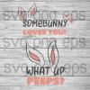 Some bunny loves you svg, Bunny Svg, Bunny Cutting Files, Bunny Svg Files For Silhouette, Files For Cricut, SVG, DXF, EPS, PNG Instant Download