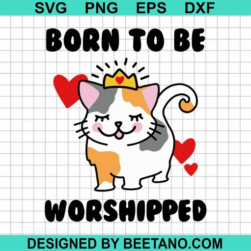 Born To Be Worshipped 2020