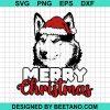 Perfect Merry Christmas Siberian Husky Dog 2020
