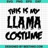 This Is My Llama Costume
