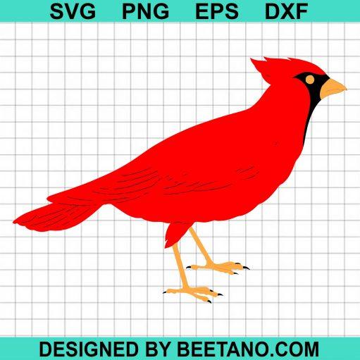 Cardinals svg, Cardinals bird